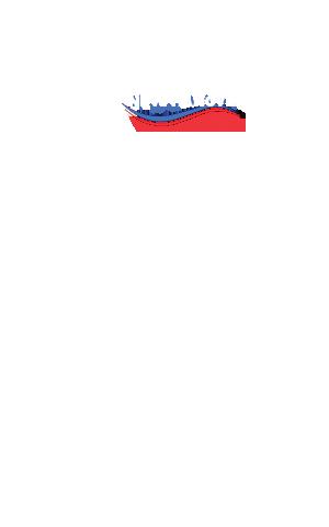 Nelson Beaulieu Campaign Snapshot